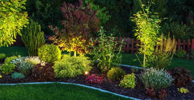 backyard designs - Landscape Lighting - Peoria, IL Chop Chop Landscaping - Peoria, IL